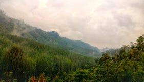 зеленые горные склоны Стоковые Изображения