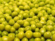 зеленые горохи Стоковые Изображения