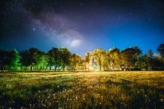 Зеленые древесины деревьев в парке под небом ночи звёздным польза таблицы фото ночи ландшафта установки изображения предпосылки к Стоковые Фотографии RF
