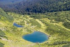 Зеленые ели и голубое озеро на фоне прикарпатских гор в лете, взгляд сверху Украина Стоковые Фотографии RF