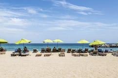 Зеленые зонтики на пляже St Китс стоковое фото rf