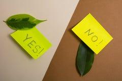 Зеленые и желтые листы липкой бумаги с надписями, да и нет Стоковые Изображения