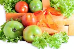Зеленые и красные томаты Стоковое Изображение
