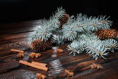 Зеленые конусы ветви и сосны сосны Специи и сосна на деревянной предпосылке Состав зимы Стоковая Фотография