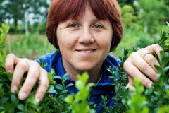 зеленые листья peeking женщина Стоковое фото RF