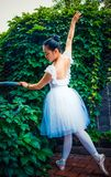 Зеленые лозы, актрисы практикуя балет стоковые фотографии rf