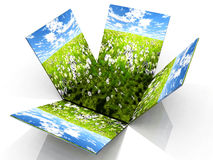 зеленые лужки иллюстрация вектора