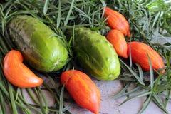Зеленые луки, томаты и огурец с астрагоном зеленых цветов Стоковые Изображения RF