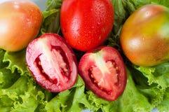 Зеленые овощи и томаты Стоковая Фотография RF