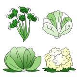 зеленые овощи Стоковое фото RF