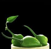 зеленые перцы Стоковые Фотографии RF