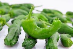 Зеленые перцы Стоковая Фотография RF