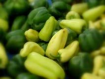 зеленые перцы Стоковые Фото