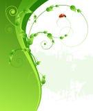 Зеленые предпосылка, листья и ladybird картины Стоковые Фото