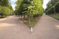зеленые пути Стоковое Фото
