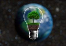 Зеленые саженцы в концепции альтернативной энергии электрической лампочки, agai Стоковое фото RF