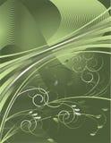 зеленые серые тесемки Стоковые Фото