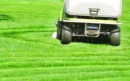 Зеленые скашивание травы с профессиональной газонокосилкой стоковое изображение rf