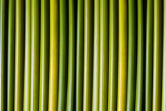 зеленые стержни Стоковая Фотография