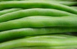 Зеленые фасоли закрывают вверх по взгляду стоковые изображения