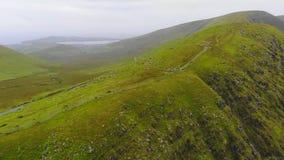 Зеленые холмы вида с воздуха Ирландии от трутня стоковое фото rf