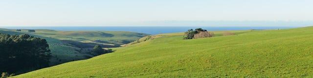 Зеленые холмы и океан Стоковое Изображение RF