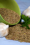 зеленые чечевицы Стоковые Изображения RF