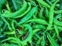 Зеленые Chilies для продажи Стоковые Изображения RF