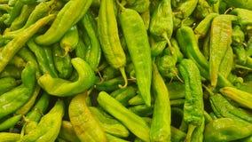 Зеленые chilis люка подготавливают для продажи стоковое изображение