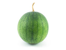 Зеленый арбуз изолированный на белой предпосылке Стоковые Изображения RF