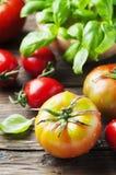 Зеленый базилик и красный сладостный томат Стоковые Изображения