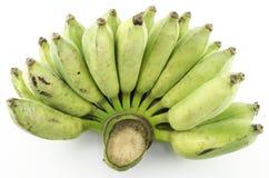 Зеленый банан Стоковое Изображение