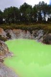 зеленый бассеин стоковые фотографии rf