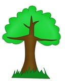 зеленый вал Стоковая Фотография RF