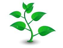 зеленый вектор лепестка Стоковые Изображения RF