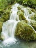 зеленый водопад Стоковая Фотография