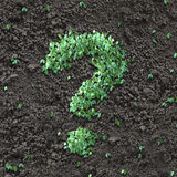зеленый вопрос о метки стоковое изображение