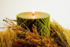Зеленый воск душил черенок свечи и риса, золотой цветок травы стоковая фотография