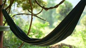 Зеленый гамак порхает в ветре с джунглями на заднем плане видеоматериал