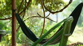 Зеленый гамак порхает в ветре с джунглями на заднем плане акции видеоматериалы