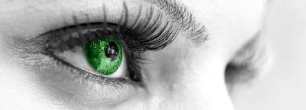 Зеленый глаз - красивейший, женственно Стоковое Изображение