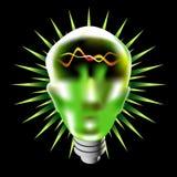 зеленый головной lightbulb Стоковая Фотография RF
