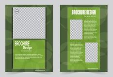 Зеленый дизайн рогульки шаблона брошюры бесплатная иллюстрация