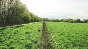 Зеленый европейский луг, разделенный проводом Стоковая Фотография