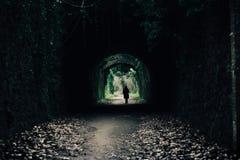Зеленый естественный тоннель в Испании стоковая фотография rf