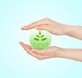 Зеленый знак экологичности Стоковые Фотографии RF