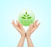 Зеленый знак экологичности Стоковая Фотография RF