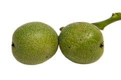 Зеленый зреть плодоовощей yaoung грецкого ореха на дереве с листьями, Стоковые Изображения RF
