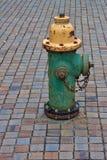 Зеленый и желтый жидкостный огнетушитель на дорожке кирпича Стоковые Фотографии RF