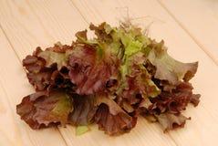 Зеленый и фиолетовый салат, салат; зеленый салат ang красный, свежая соль Стоковое Изображение RF